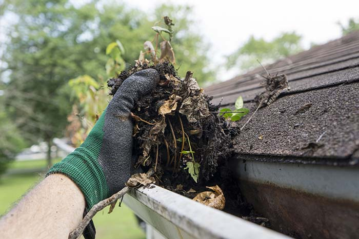 When to Replace Your Gutters